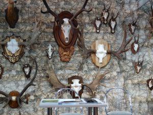 Уха, оптические прицелы и олени: БГТУ принял участие в ярмарке «Охота и рыболовство»
